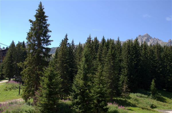 1 studio 4 personnes, skis aux pieds / Domaine du Jardin Alpin 108B (Montagne de Charme) / Séjour Sérénité
