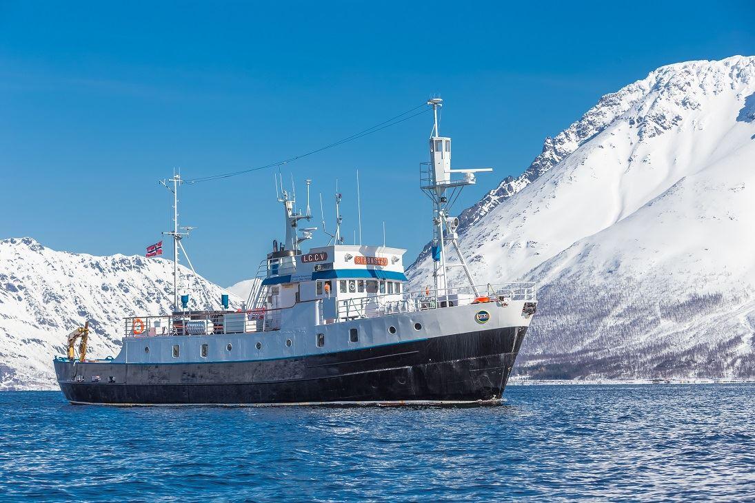 Christmas cruise around Tromsø on MV Strønstad - Arctic Expedition