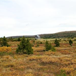 Autumn holiday in Hafjell