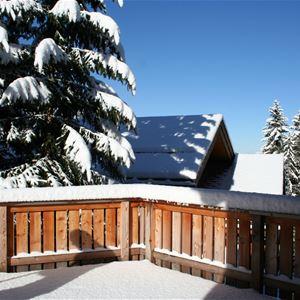 10/12 people ski-in ski-out / CHALET GENEPI (Mountain of dream)