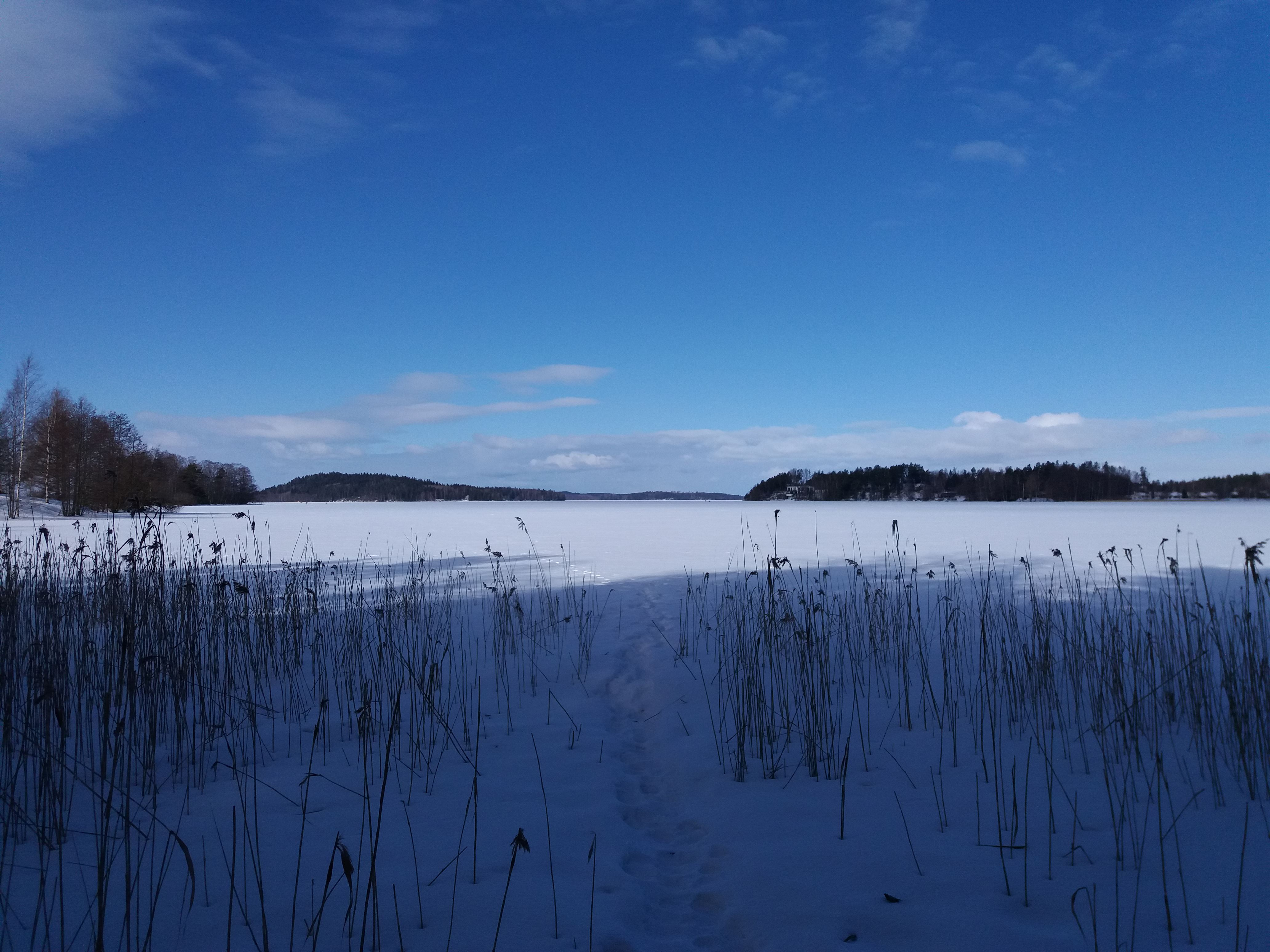 Winter Day on Island Snow Shoe or Ski Trip   Best Lake Nature Adventures