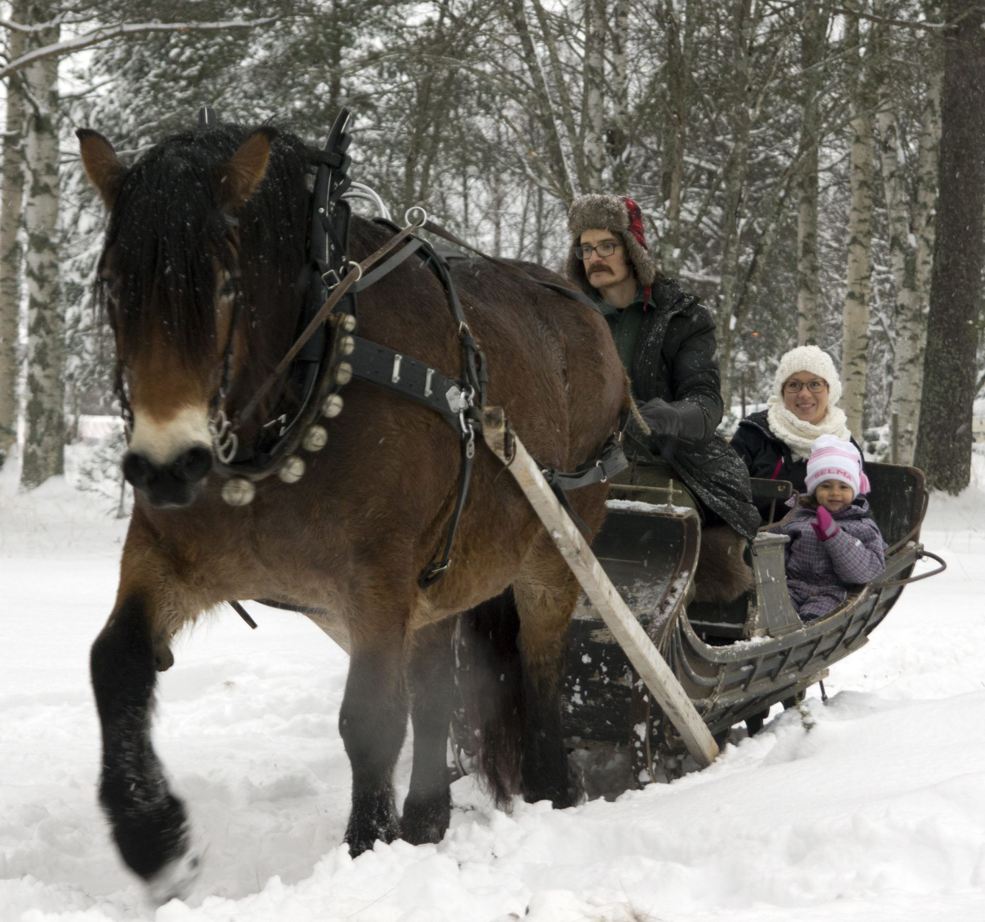Anders Björkman, Traditioneller Weihnachtsmarkt beim Västerbottens Museum