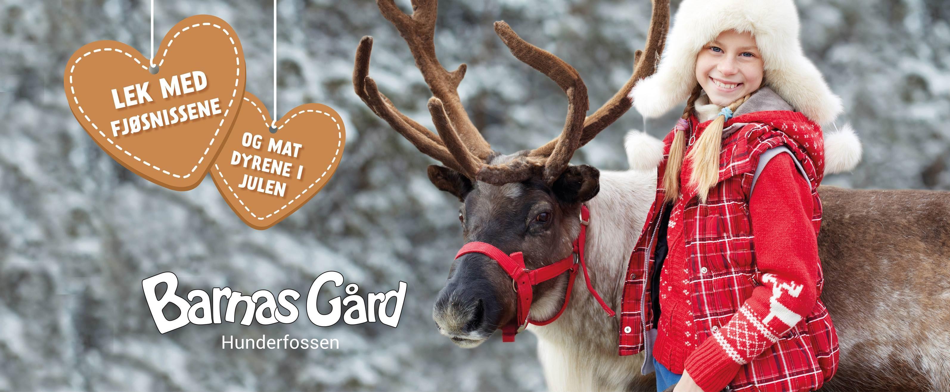 © Barnas gård,  Christmas at Childrens farm