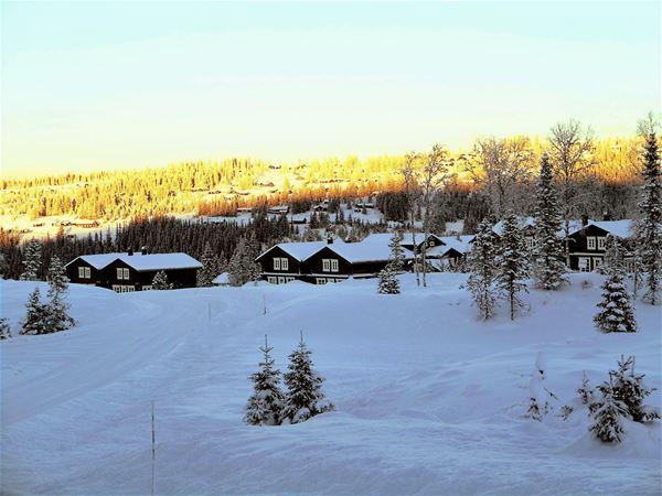 Ski cross in Hafjell ski stadium