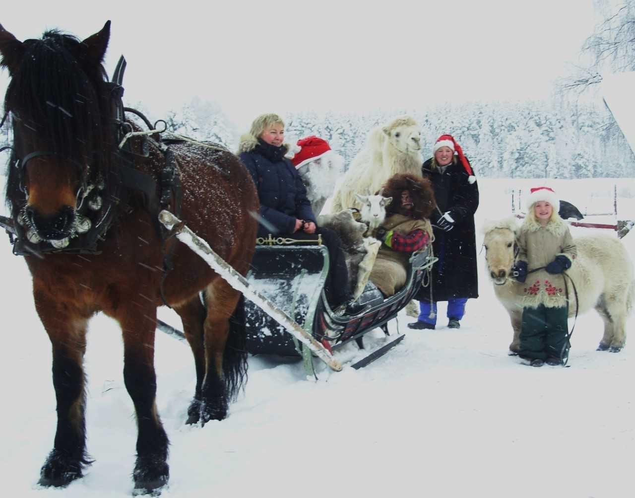 Jul på Mickelbo Gård