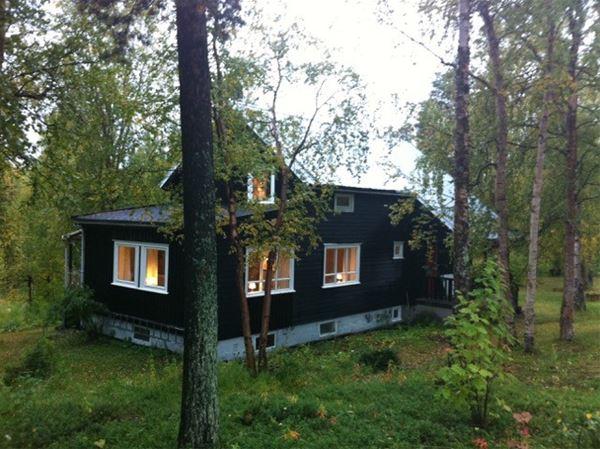 Birk husky sitt gjestehus i Pasvik skogen. Ligger ved Pasvikelva. Masse grønne trær, å grønn natur rundt.