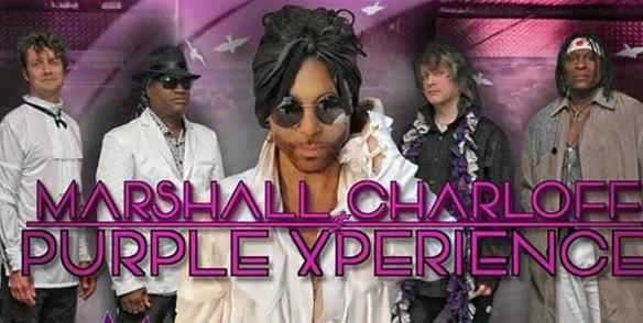 © Copy: https://purplexperience.com/, Tribute to Prince - The Purple Xperience