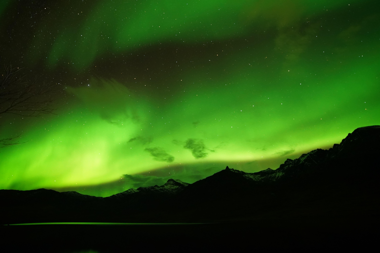 Amazing Aurora Tour - Amazing Arctic
