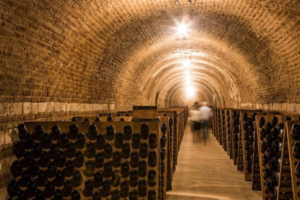 Cité du champagne - visite en anglais