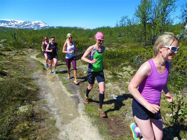 FitCamp på Norefjell