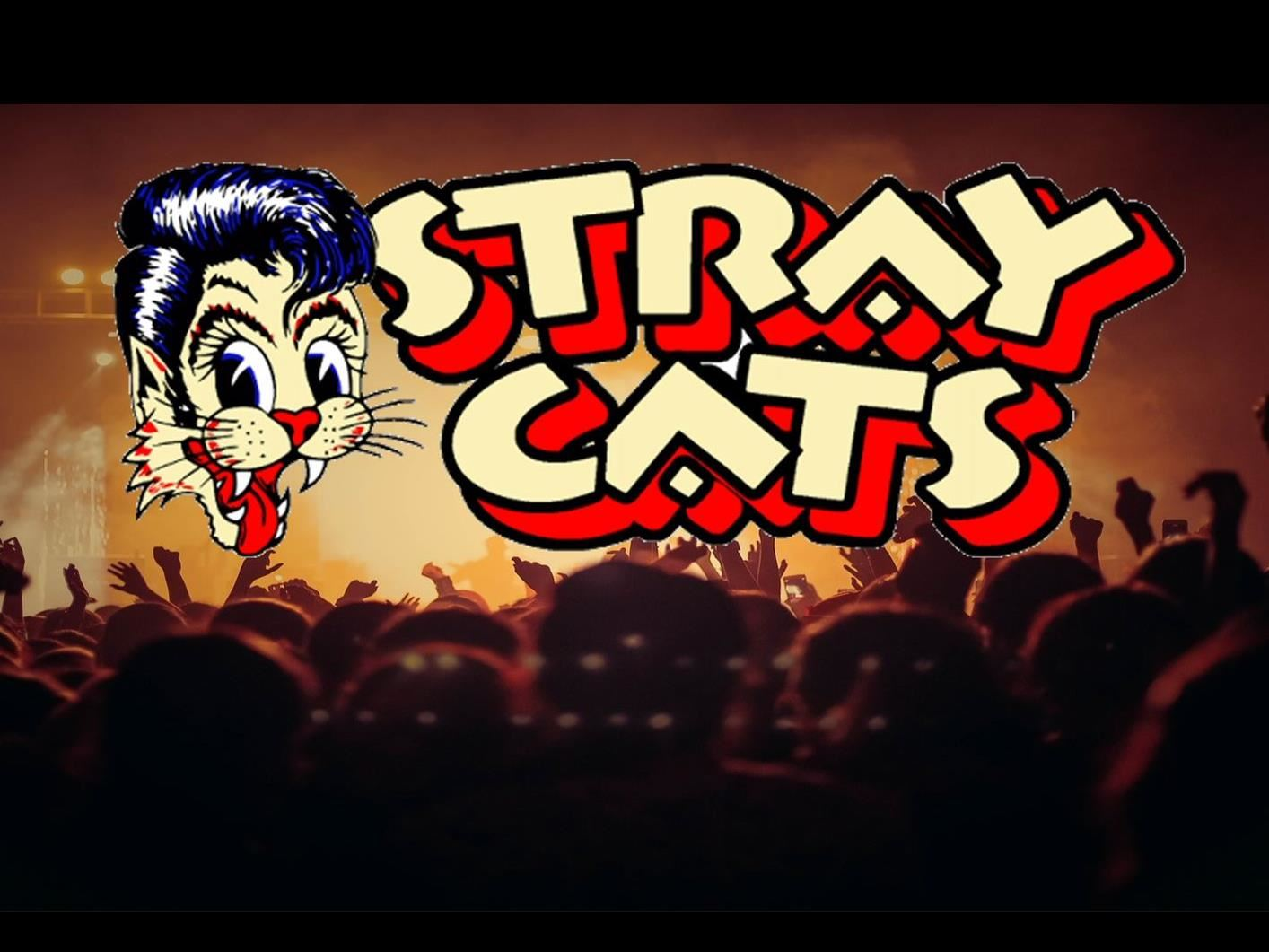 Jamboree Radio Festival med Stray Cats