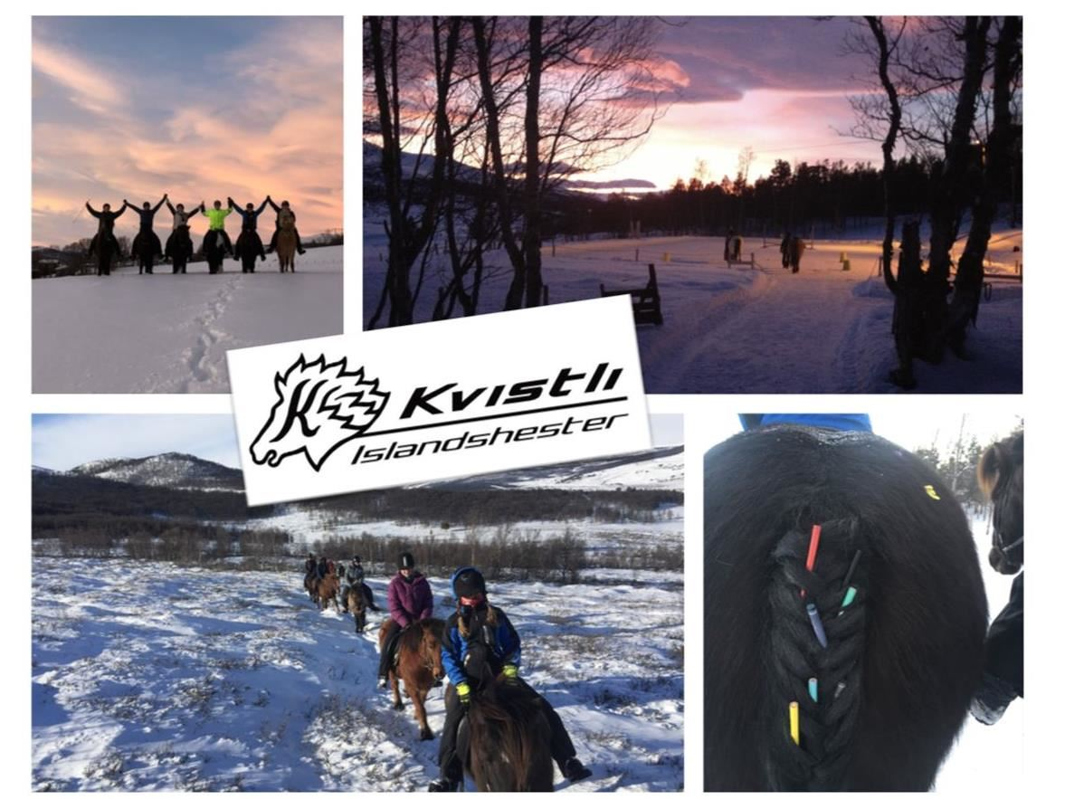 Rideleir i vinterferien