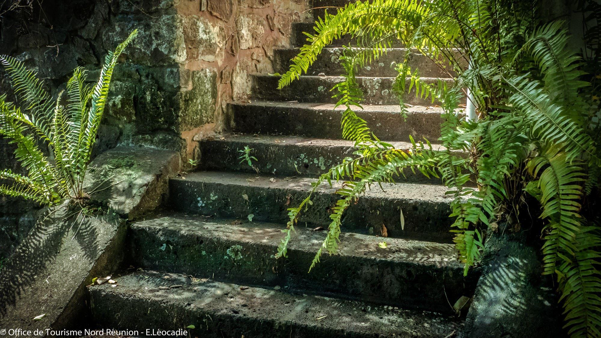 lebeaupays# Jardin de la Maison d'Edith