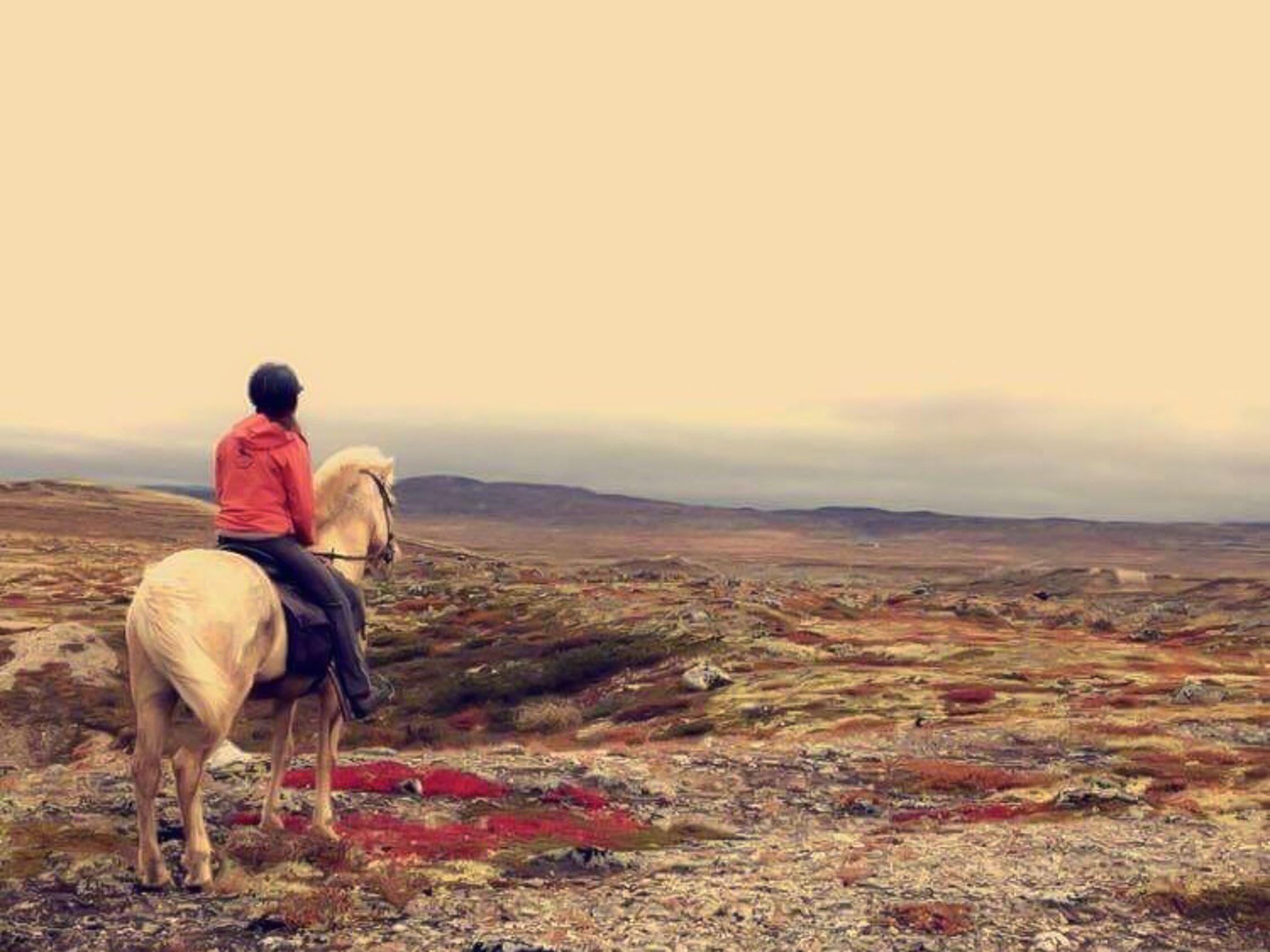 Moskussafari på hesteryggen