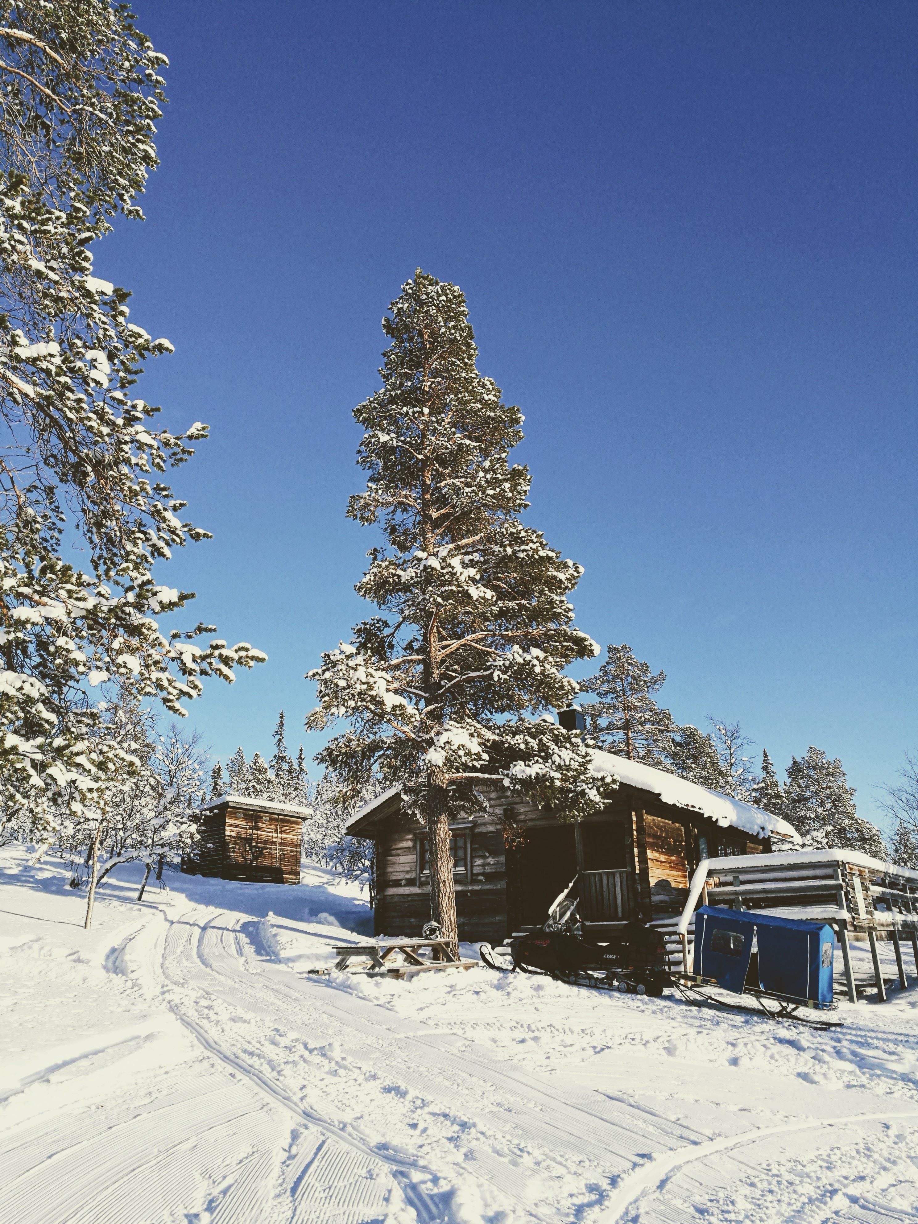 Falkboe Våffelstuga Tännäs