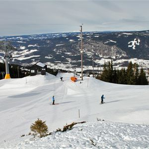 Alpine ski race for kids