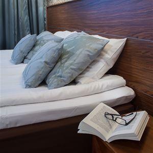Hotel Fjalar
