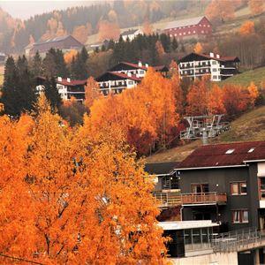 Autumn holiday activities