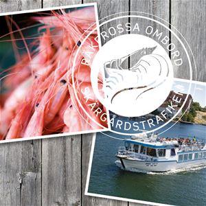 Shrimp Galore on board at Gåsefjärden