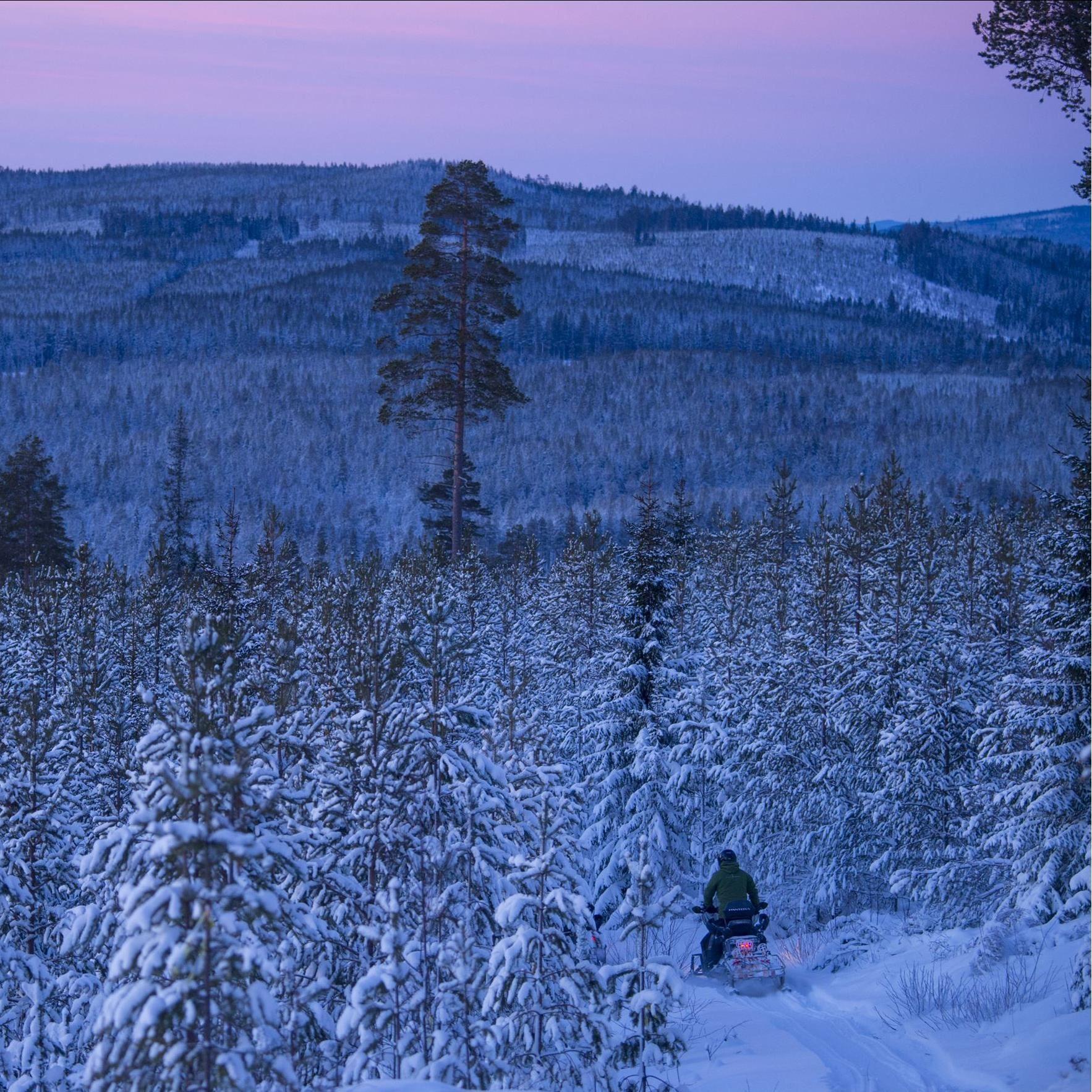 Foto Patrick Trägårdh,  © Granö Beckasin, Snowmobile in Granö