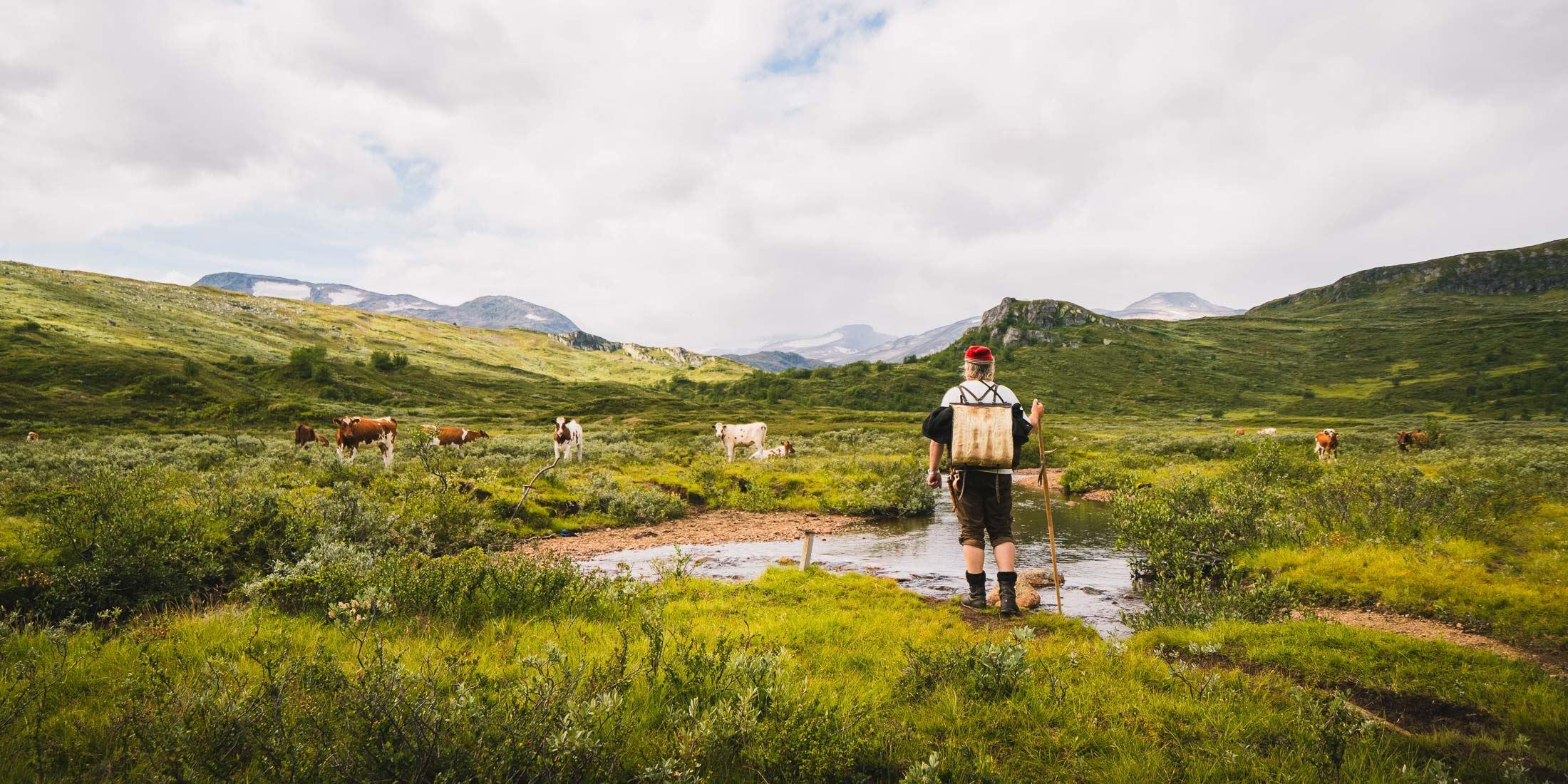 Guida historiske turer i Jotunheimen