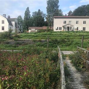 Härnösand/Sågverket Hostel