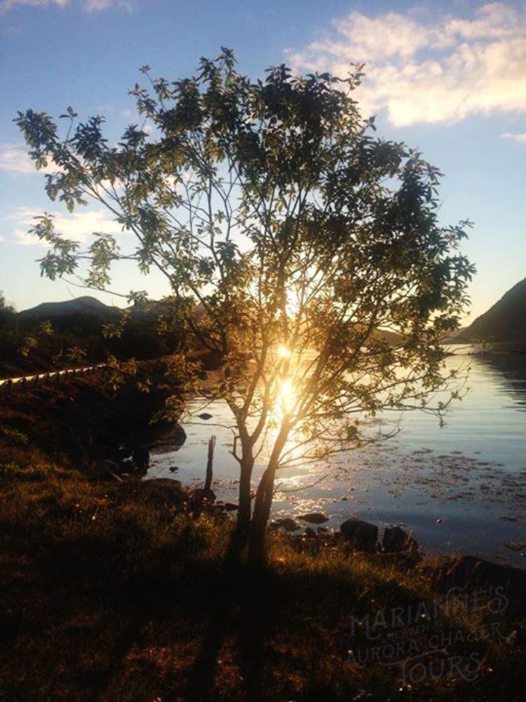 Fjordtur med Profesjonell fotograf