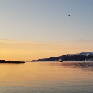 Her er det tatt bilde av hurtigruten som kommer inn Båtsfjord fjorden. I nydelig sol nedgang.
