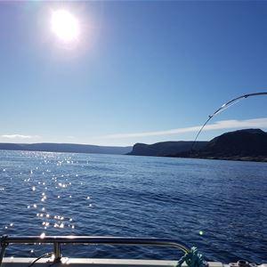 Bildet er tatt fra en Båt, det bare toppen på en fiskestang som er bøyd vises. Det er fisk på kroken, å du ser ut over Båtsfjord fjorden i strålende skyfri himmel og sol.