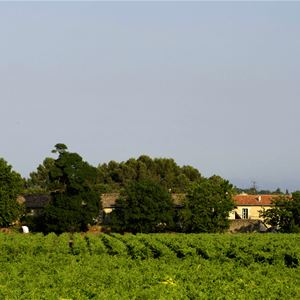 Château de Fourques: a tasting with wine and food pairing