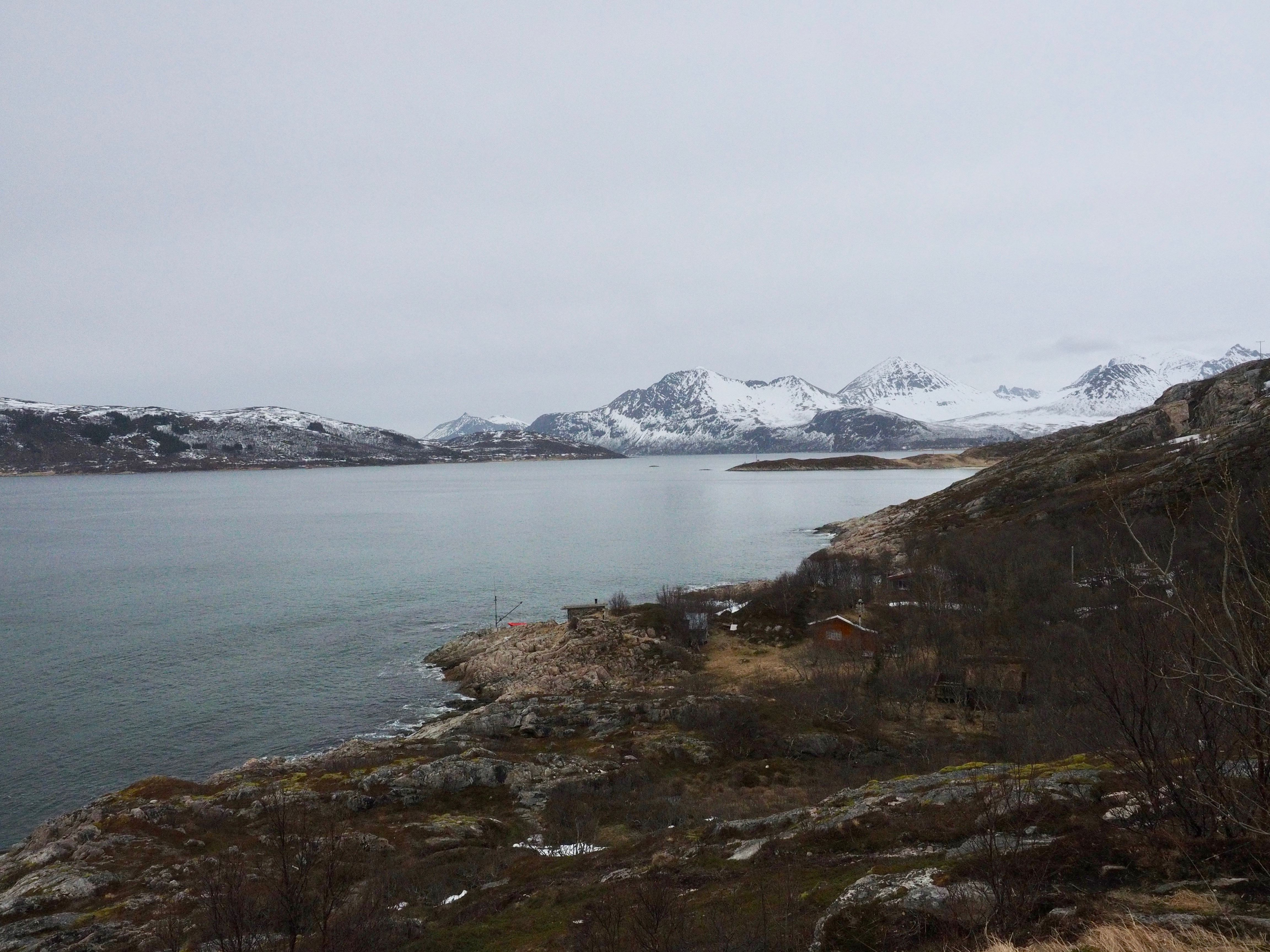 Fjords and Arctic Nature Tour – Your Ultimate Fjords and Nature Experience – Tromsø Guide