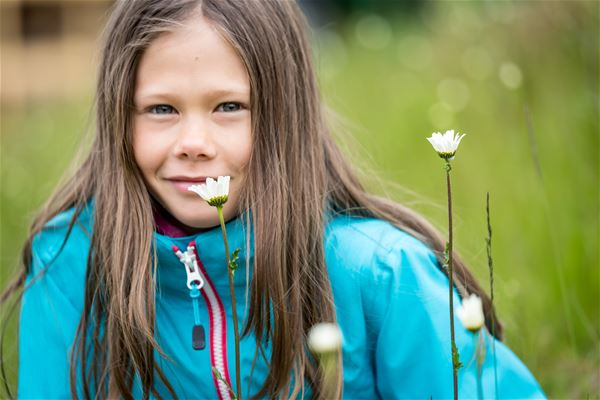 Guidad tur men Ingemar Lind i Tänndalens natur- och blomsterstig.