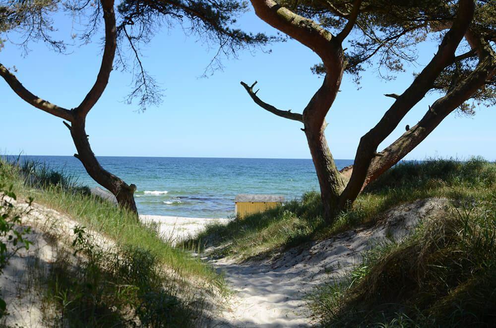 4. Beachdag med smakupplevelser (Fredag)