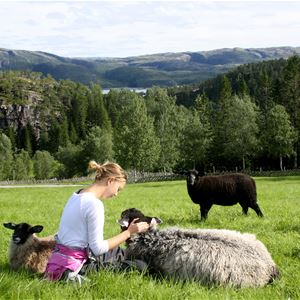 Setran Gård (Setran Farm)