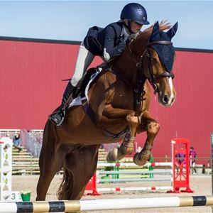 Kalmar Challenger - Nationell och regional hopptävling häst