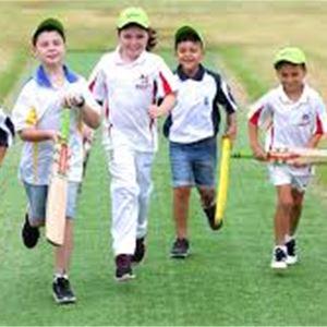 Prova på: Cricket