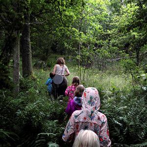 Väsenvandring i Trollskogen