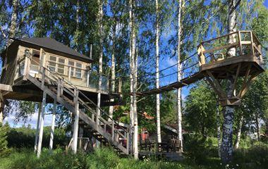 Exklusiv trädkoja i Svedjebo, Bjuråker