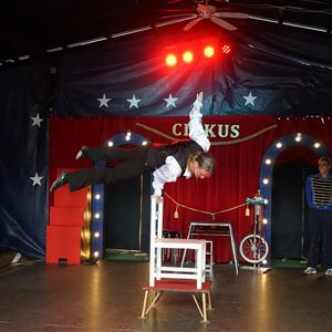 Circus in Lilleputthammer