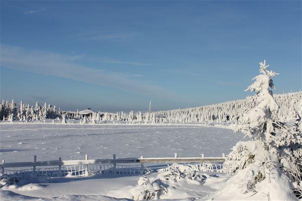 Lunnstadmyrvegen 57 chalet - Hafjelltoppen