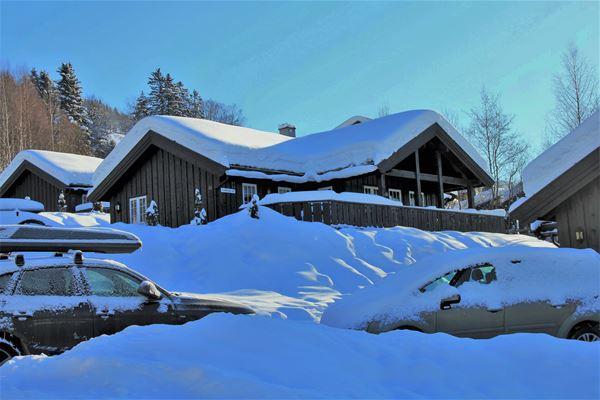 Nordlia 11 cottage