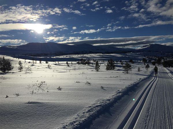 Rondeheim - Den norske fjellskolen