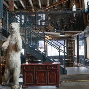 © radisson blu, a room with decorations of a polar bear and old fishing stuff