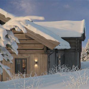 Mosetertoppen Lodge