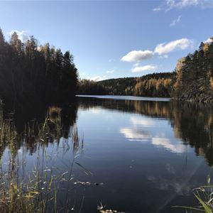 Hiidenhirvi | Iken Mökit Cottages