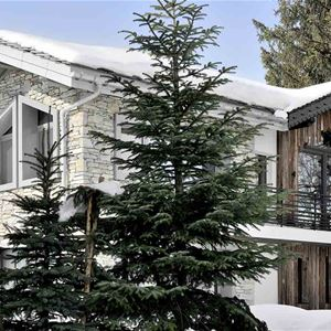 5 rooms 6 to 8 people / CHALET ILULISSAT (Mountain of exception)