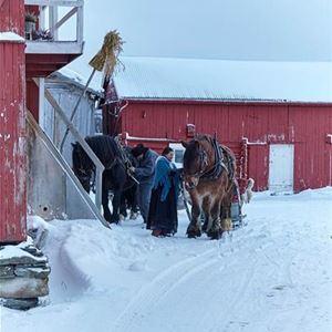 Familie Julebord i Vauldalenilie Julebord i Vauldalen