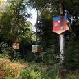 Running Forêt Monumentale (visite en courant)
