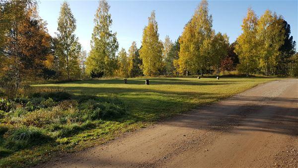 gruddsväg framför grön äng med gulnande träd i bakgrunden.