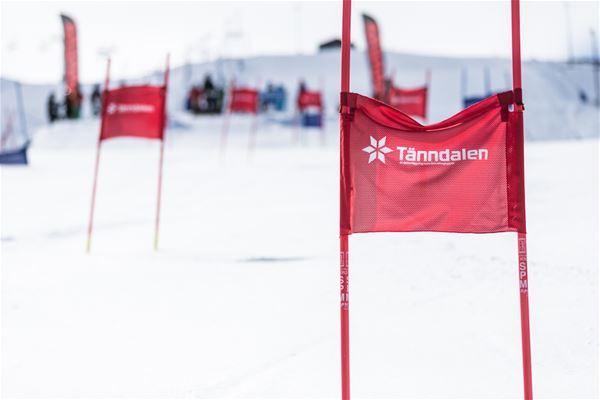 Femkamp i Tänndalen